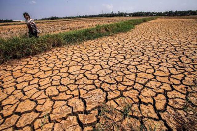 tác động đến nông nghiệp